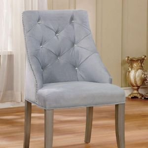 Diocles Silver Light Gray Table Chair(2PK)